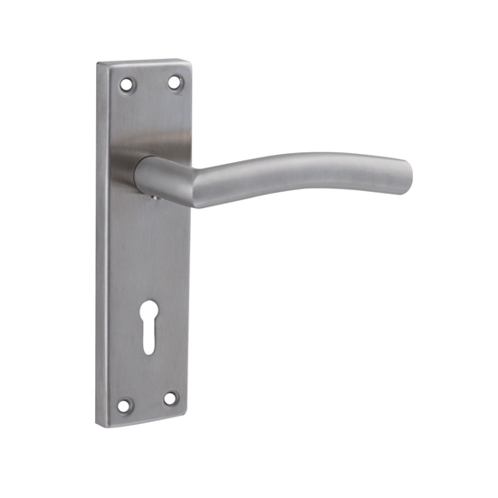 Picture of Curve Stainless Steel Handles on 150mm Back Plate with standard keyhole