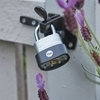 Picture of 60mm Laminated Steel Padlock